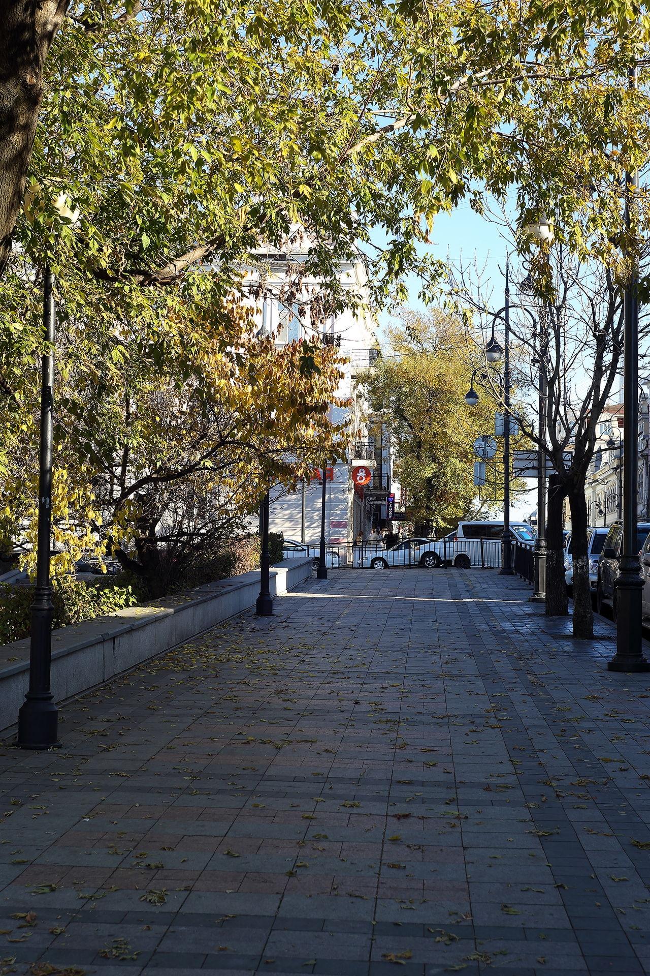 Владивосток, Светланская улица
