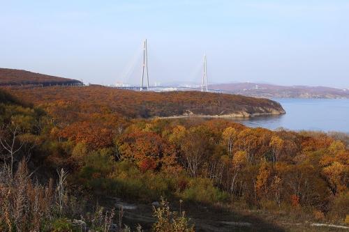 Мост на о.Русский, Владивосток